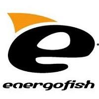 Energo Team